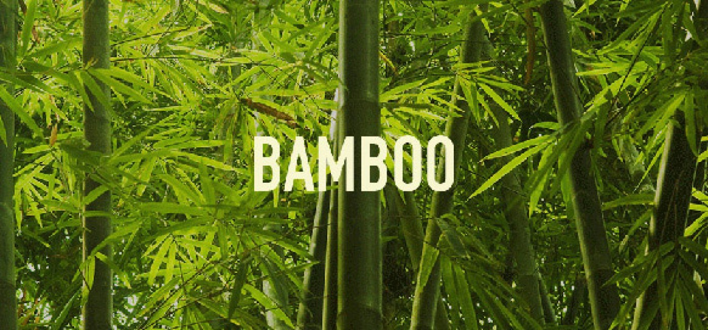 Bambu İç Giyim